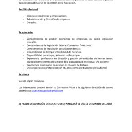 Oferta de empleo: director técnico o gerente en Autismo Segovia
