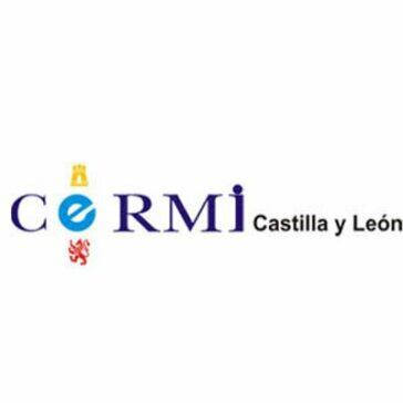 CERMI Castilla y León